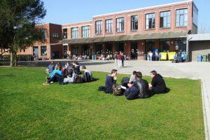 speelplaats met nieuw gras en leerlingen